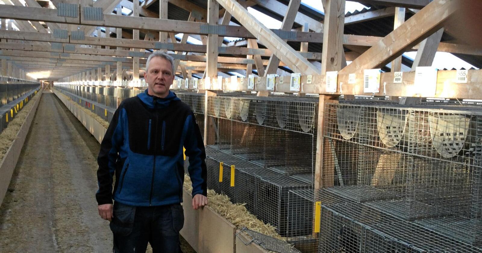 Milliontap: Bength Oftedal (49), pelsdyrbonde med mink ved Sola på Jæren, mister fleire millionar kroner i kompensasjon sidan han gir dyra større plass enn minstekrava i regelverket. Foto: Privat