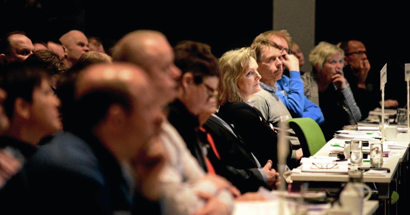 Får kritikk: Styret i Nortura, her ved styreleiar Trine Hasvang Vaag under årsmøtet i april 2019. Foto: Siri Juell Rasmussen