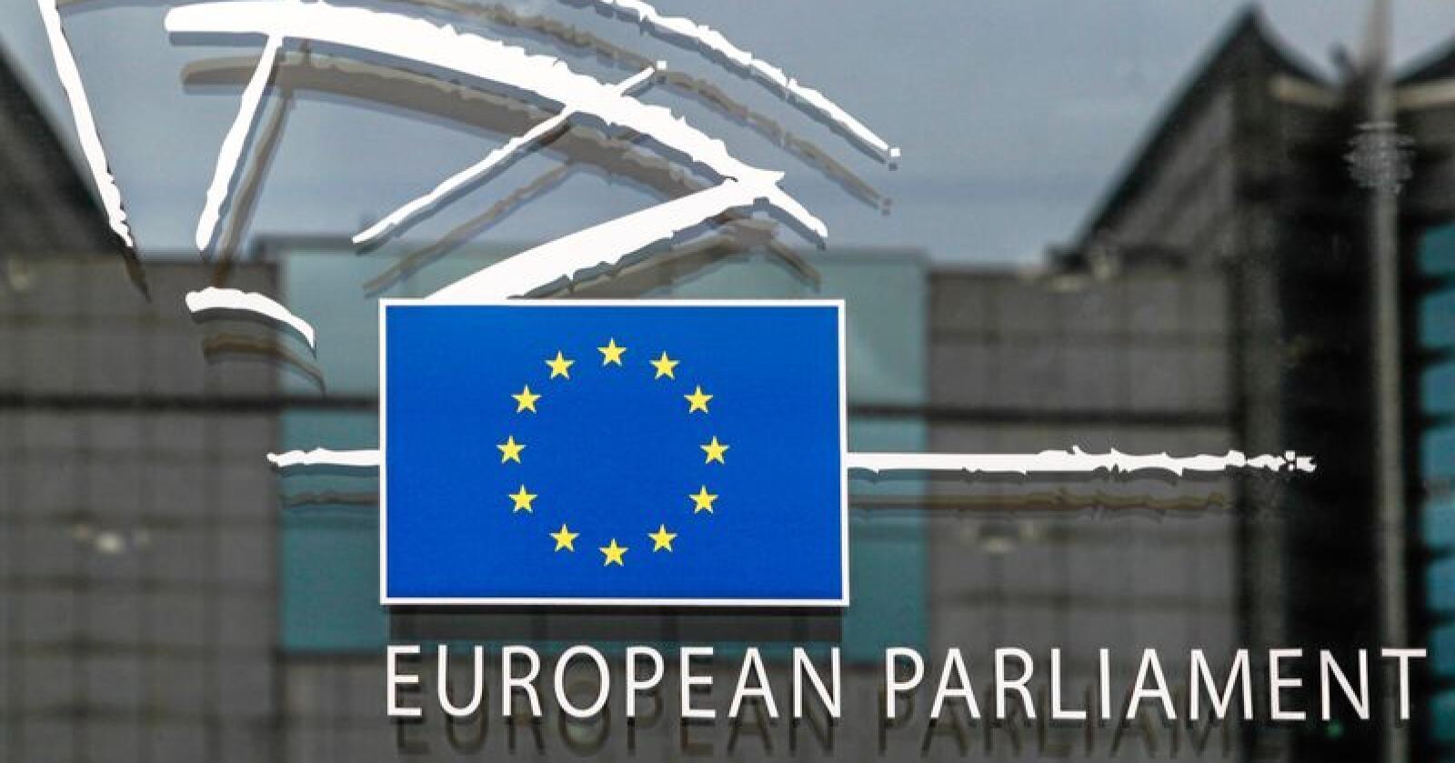 Utvidet demokratiet: Ved EU-valget i vår fikk danskene og svenskene stemme over hvem som skal representere dem i Europaparlamentet, skriver Knut André Sande. Foto: Michael Erhardsson / Mostphotos