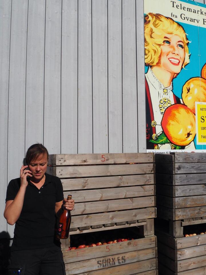 I ett: –Beklager, men her går det i ett. De siste ukene har dette vært Linda Renate Hellekås sitt standardsvar når det ringer i telefonen. Egentlig skulle hun ikke bli gårdskjerring, men kjøpte gården etter faren sin onkel. Til denne tilhørte noen epletrær. I dag er hun daglig leder av Telemark frukt- og bærpresseri, firebarnsmor og livlig siderprodusent. Alle foto: Marte Østmoe