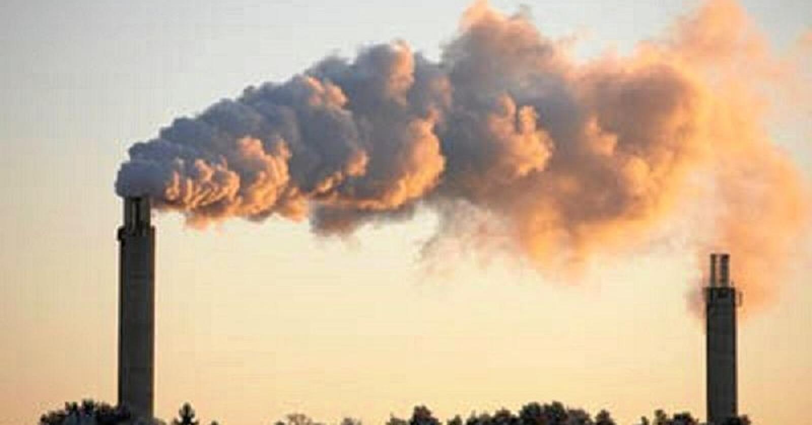 Vanskelig: Det blir ikke mer gjenbruk av å avgiftsbelegge brenning, skriver innsenderen. Foto: Miljødirektoratet
