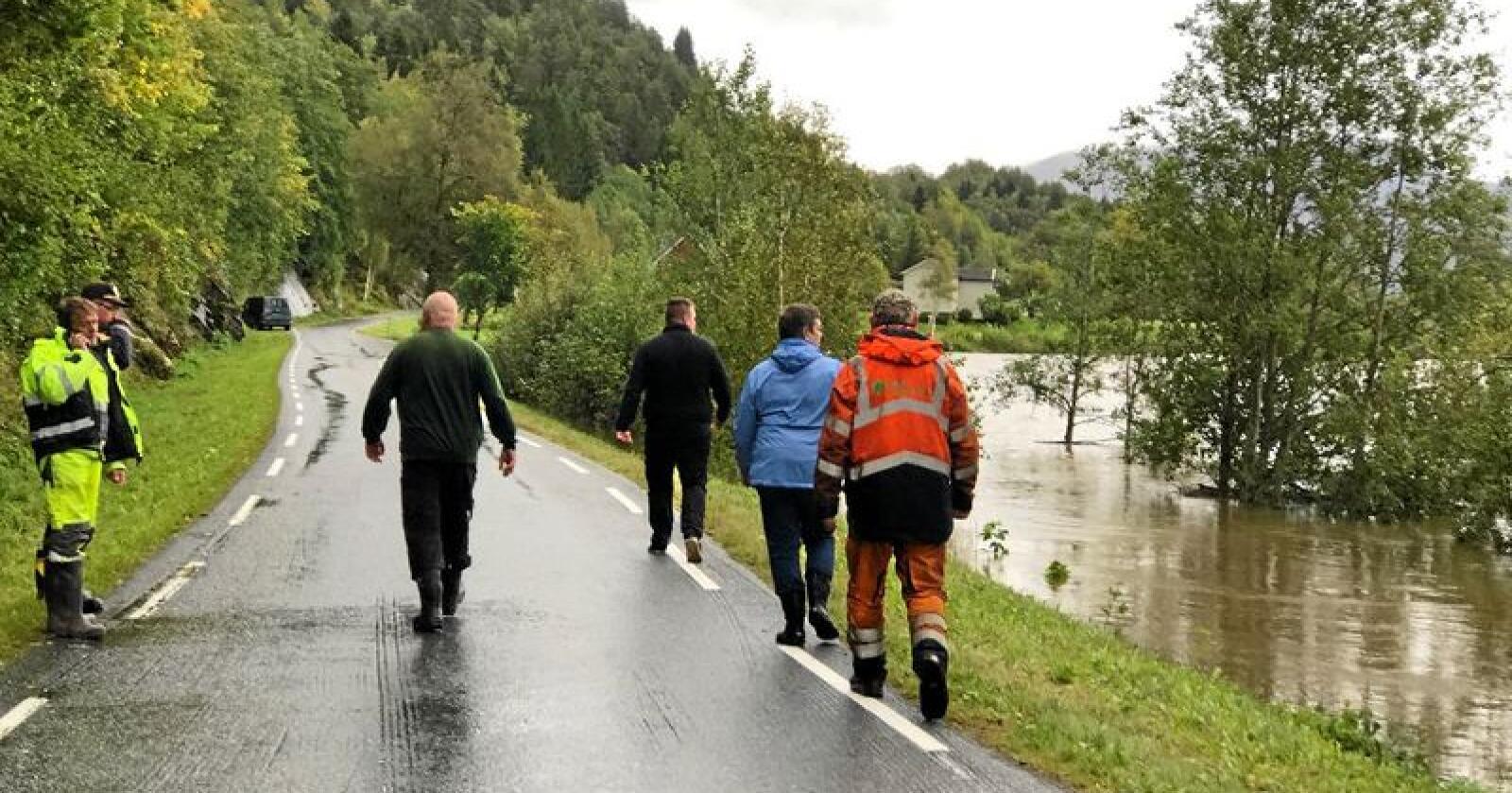 Redningsmannskaper forsøker å redde flest mulig av dyrene, mens mange sauer allerede ligger døde i elva. Foto: Tor Helge Solli/Tidens Krav