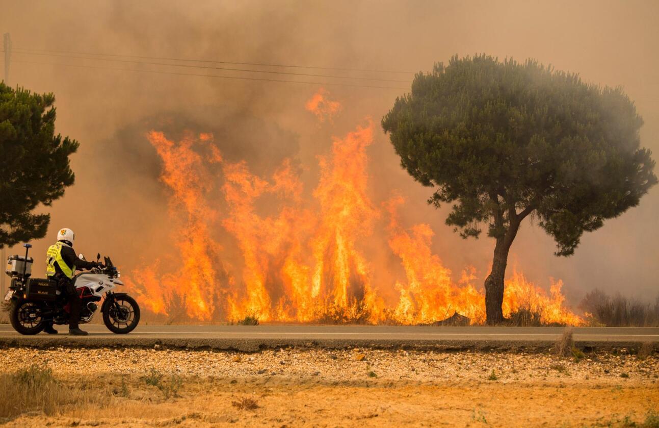 Tørken i Spania og Italia fører til svært dårlige avlinger. Bildet viser en skogbrann nær Mazagon i Spania i slutten av juni. Landet har vært herjet av en hetebølge og har hatt rekordvarme i juli. Foto: Alberto Diaz / AP / NTB scanpix