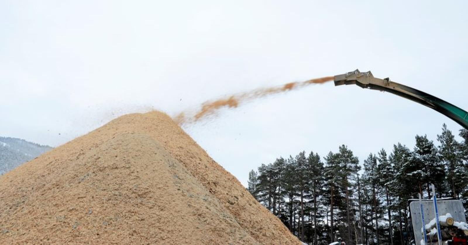 Klimatiltak: Flis som modernee bioenergiløsning er et godt klimatiltak, skriver innsenderne. Foto: Mariann Tvete