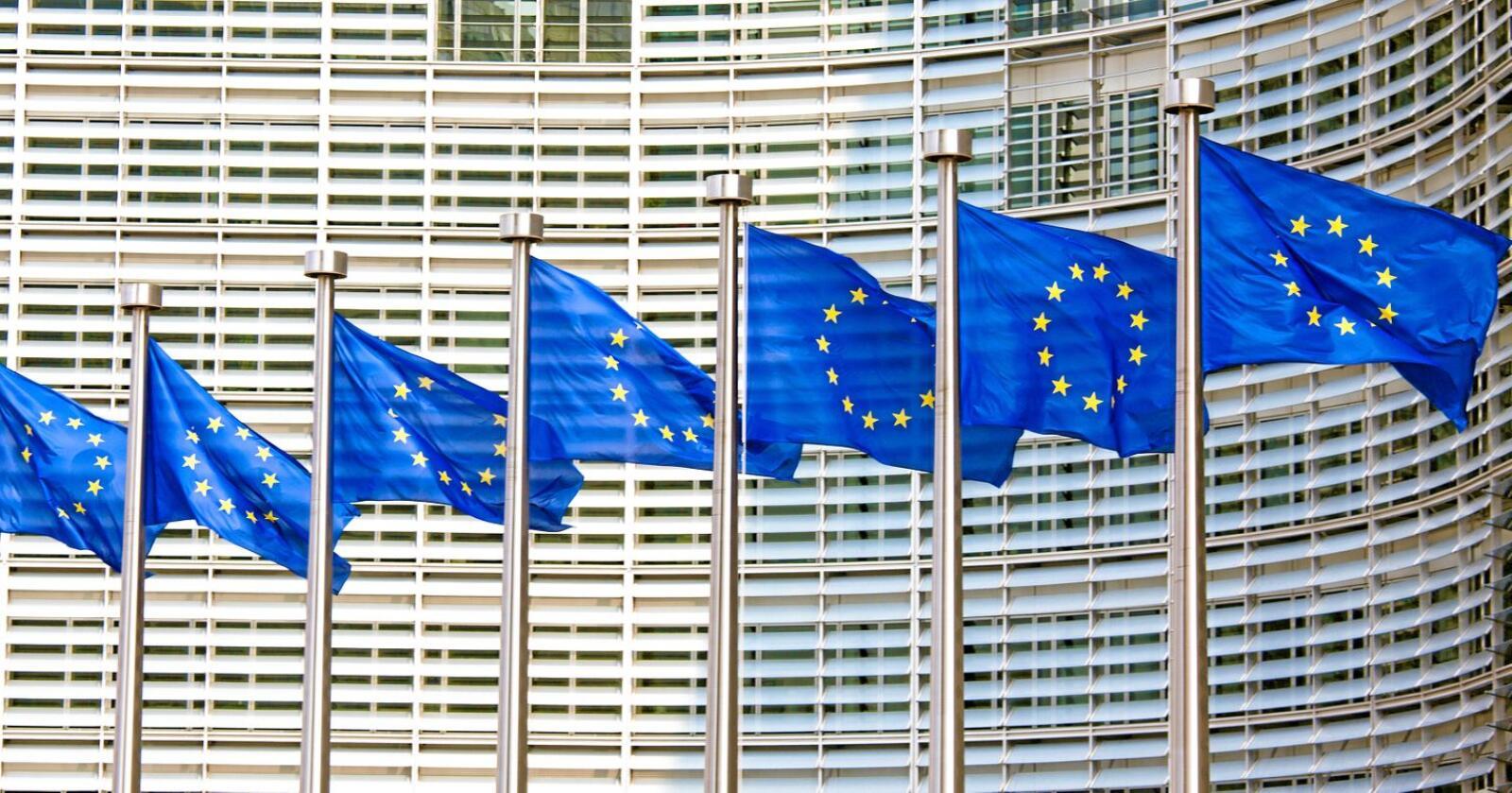 EU-blått: Finanstilsynet ser blått og lammer boligbyggingen i distriktene med urimelige kapitalkrav til lokalbankene.  Foto: jorisvo/Mosthphotos