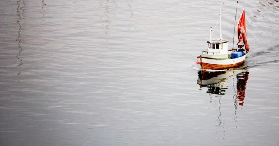 Kystflåten: Senterpartiet har markert seg som den fremste beskytter av den minste gruppen, skriver kronikkforfatteren. Foto: Kyrre Lien/NTB scanpix