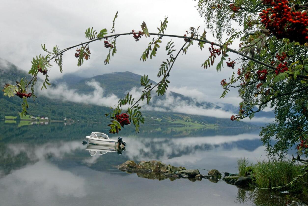 Sogn og Fjordane har ikke bare naturskjønnhet, men også verdifulle ressuser i form av vannkraft. Her Jølstervatnet. Foto: Terje Bendiksby / NTB Scanpix