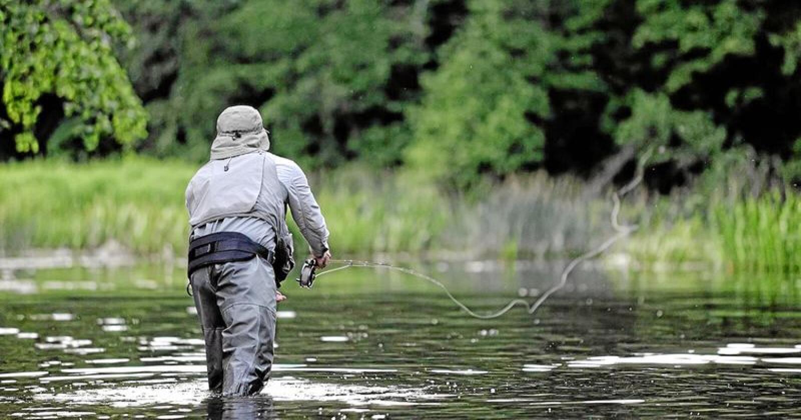 Elvefiske: Fiske reduserer i liten grad produksjonen av laks i norske elver. Foto: Norske Lakseelver