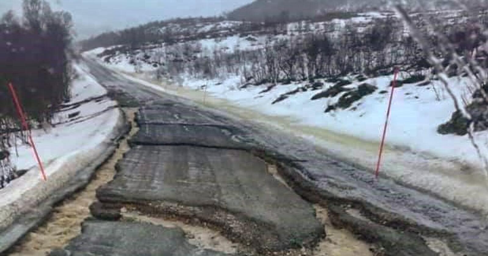 Slik ser en av fylkesveiene Reinøya ut. Foto: Lillian Berger