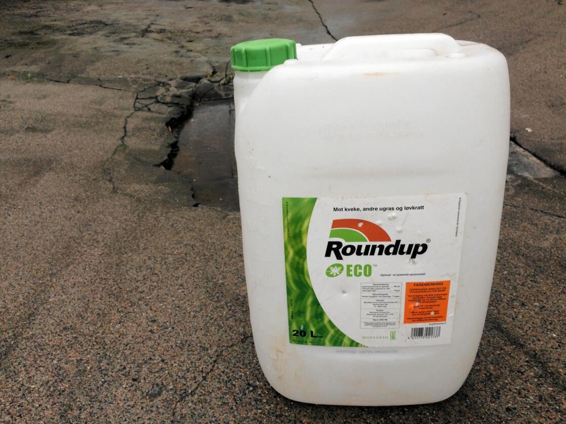 Glyfosat er virkestoffet i ugressmiddelet Roundup, som produseres av amerikanske Monsanto. Foto: Svein Egil Hatlevik