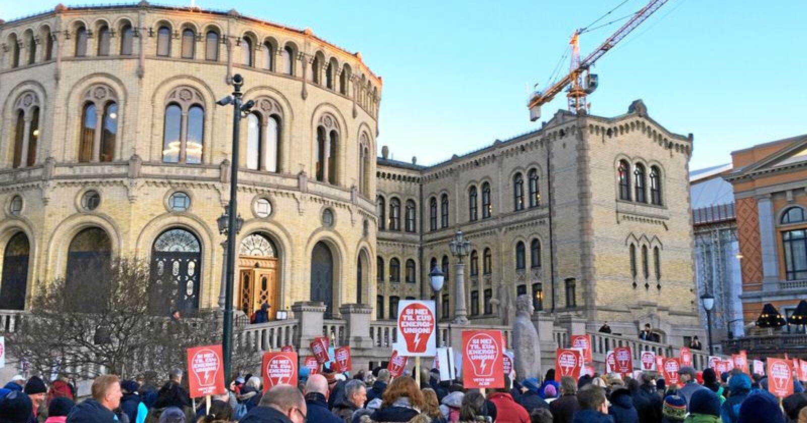Nei til Acer: Demonstrasjon utanfor Stortinget i mars 2018.Foto: Benjamin Hernes Vogl