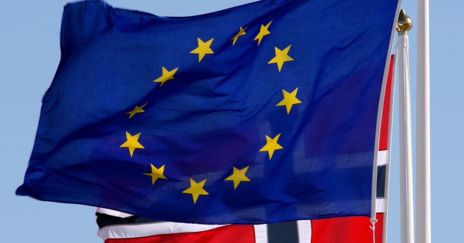 Flere fylkeslag i Venstre vil at partiet skal si ja til norsk EU-medlemskap. Arkivfoto: Lise Åserud / NTB scanpix