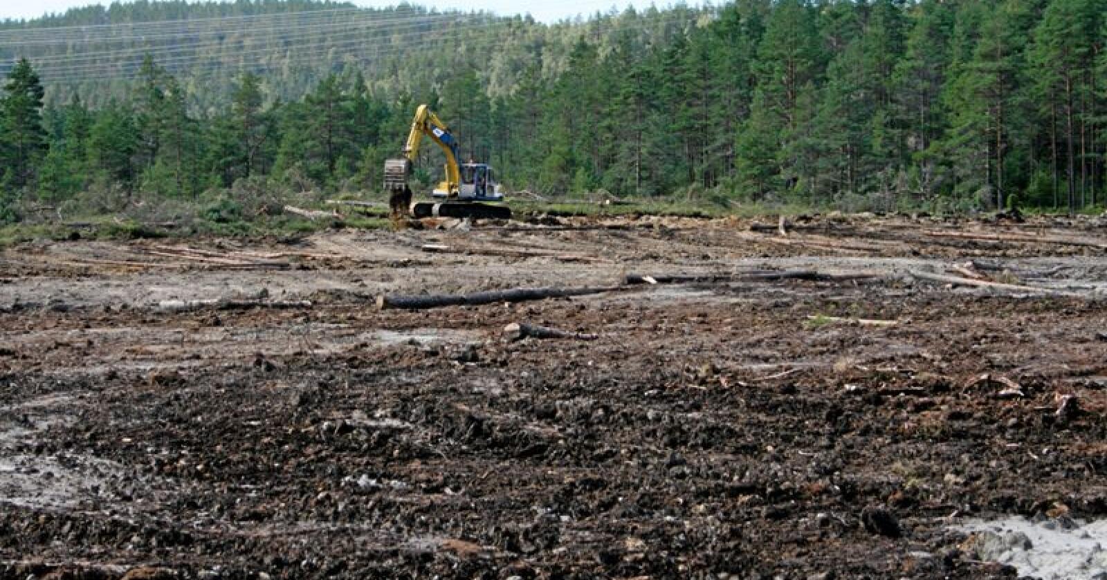 Nydyrking i skogsområde langs fylkesveg 42 inst i Flekkefjord i Vest-Agder.   jordbruk, landbruk, nydyrking, nydyrka, nydyrket, skog, myr, Kobelco gravemaskin, grev, jord, mold, gravearbeid, diesel, dieselbruk, maskin, maskinbruk, nybrottsarbeid,