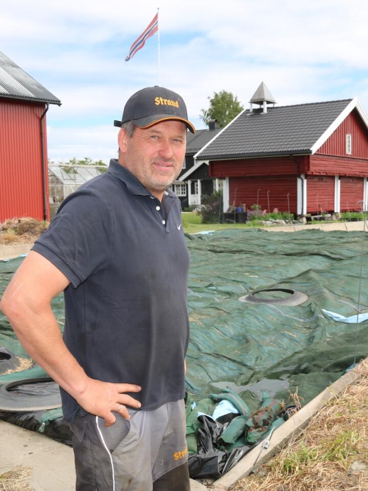 NULL SPILL: Bjørn Westby bygget sin andre plansilo for ti år siden. De skrå veggene gjør at han får tråkket godt helt ut i kantene, men uten å ødelegge plasten.