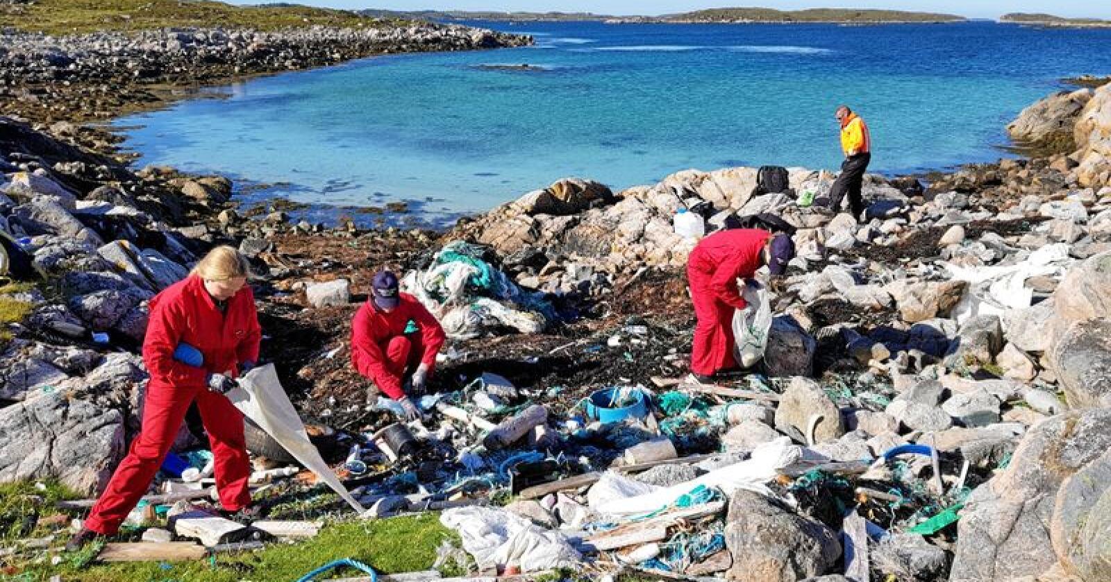 Vi trenger en massiv innsats for å bukt med søppelberget. Foto: Mausund Feltstasjon