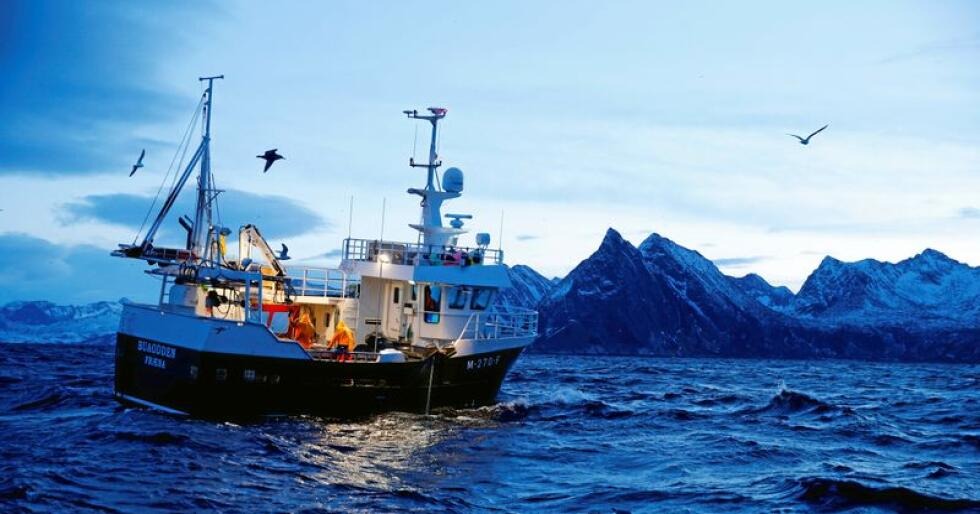 Ein flåte av mindre kystbåtar vil gi eit langt meir miljøvenleg fiske og langt fleire arbeidsplasser, skriv innsendaren. Foto: Cornelius Poppe / NTB scanpix