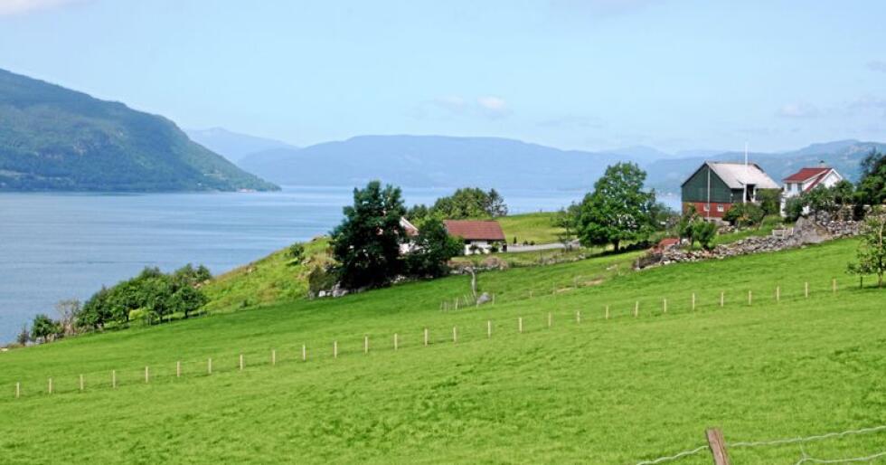 Små gårder: Vi har begrensede jordbruksarealer i Norge. Derfor må vi være gode på å være små.  Foto: Bjarne Bekkeheien Aase