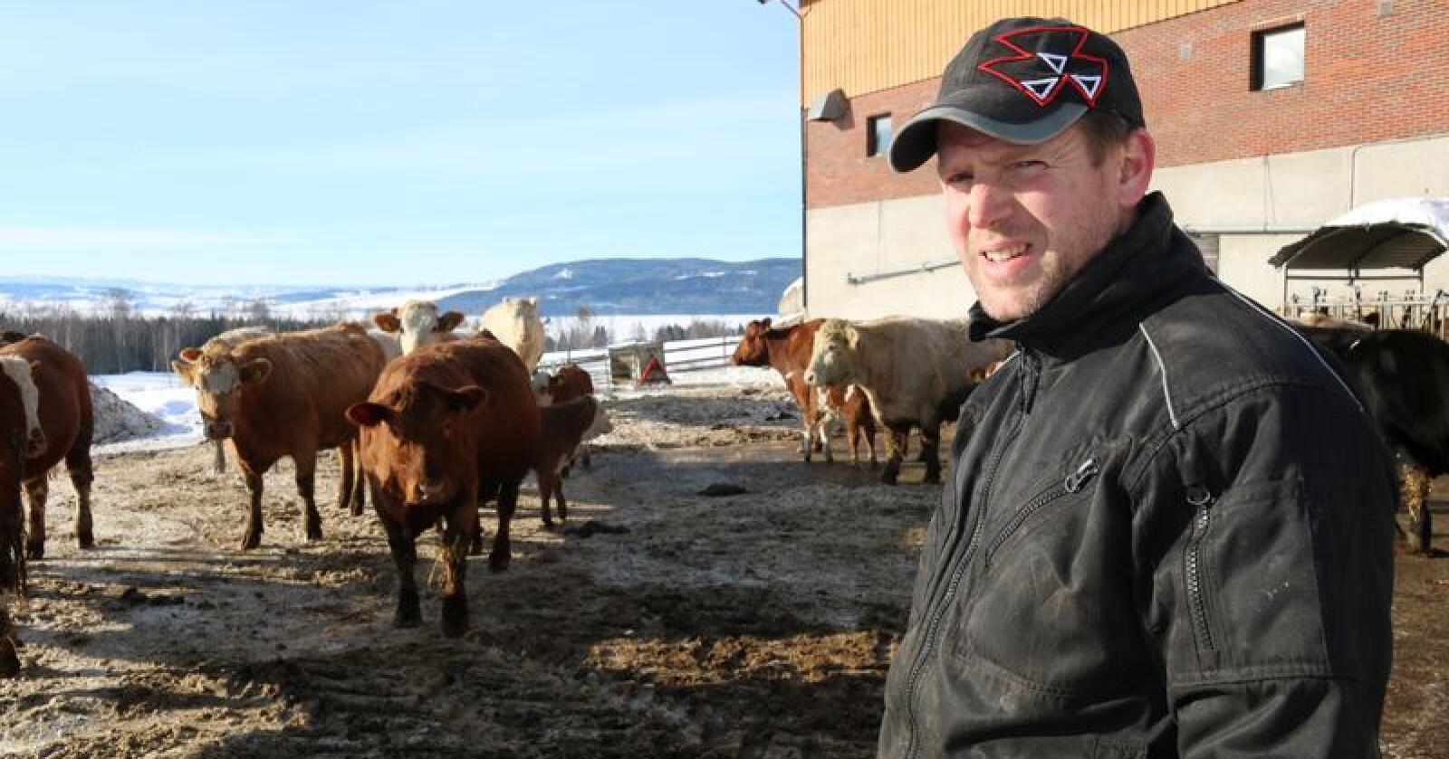 Ola Frang Wetten mener at bønder med kjøttfe og melk har mye å hente på å samarbeide. Foto: Dag Idar Jøsang