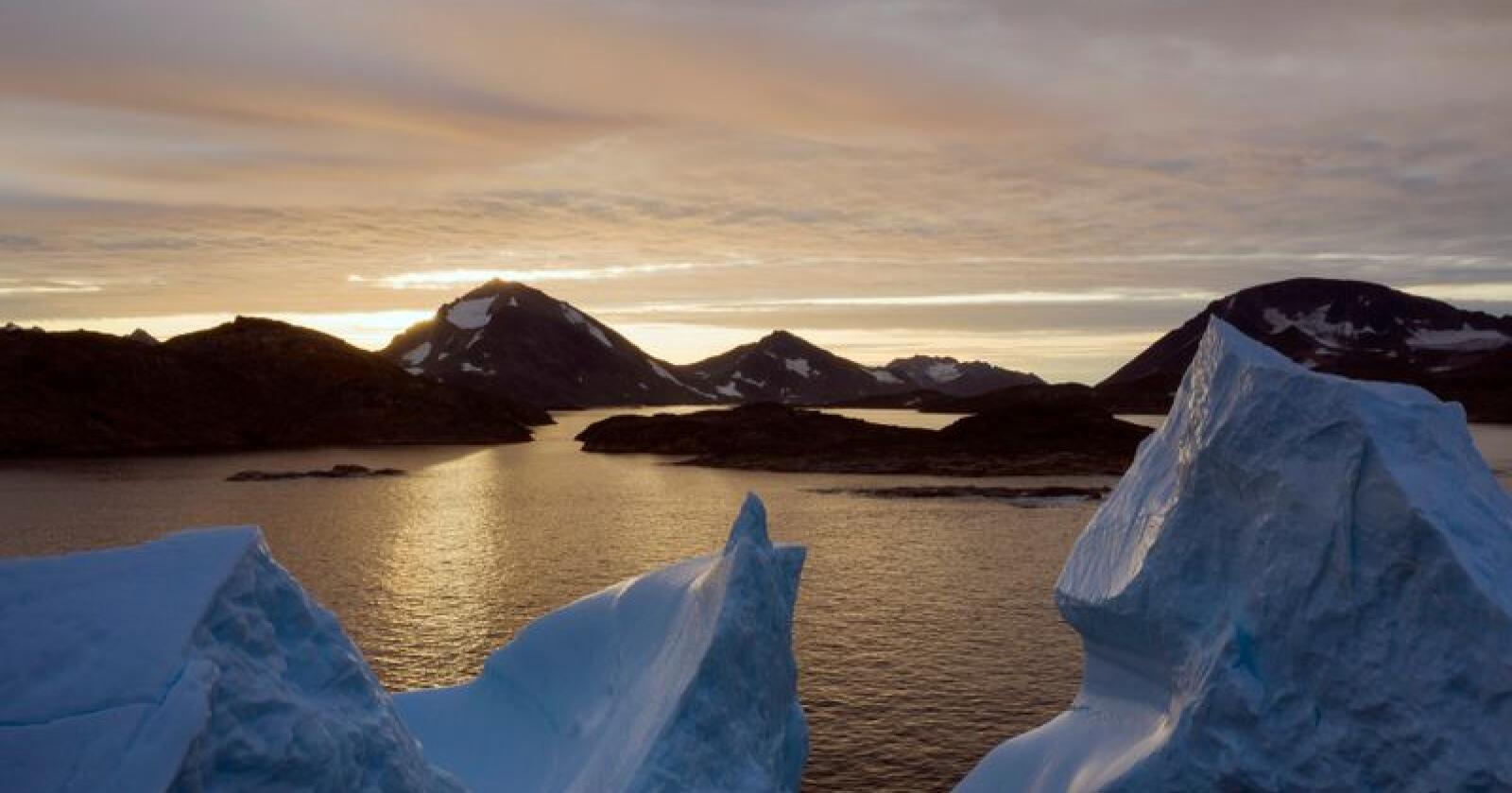Isfjell som flyter ved Grønland. Verdens isdekte flater forsvinner raskere enn hva forskerne tidligere har anslått, viser den nye rapporten fra FNs klimapanel. Foto: Felipe Dana / AP / NTB scanpix