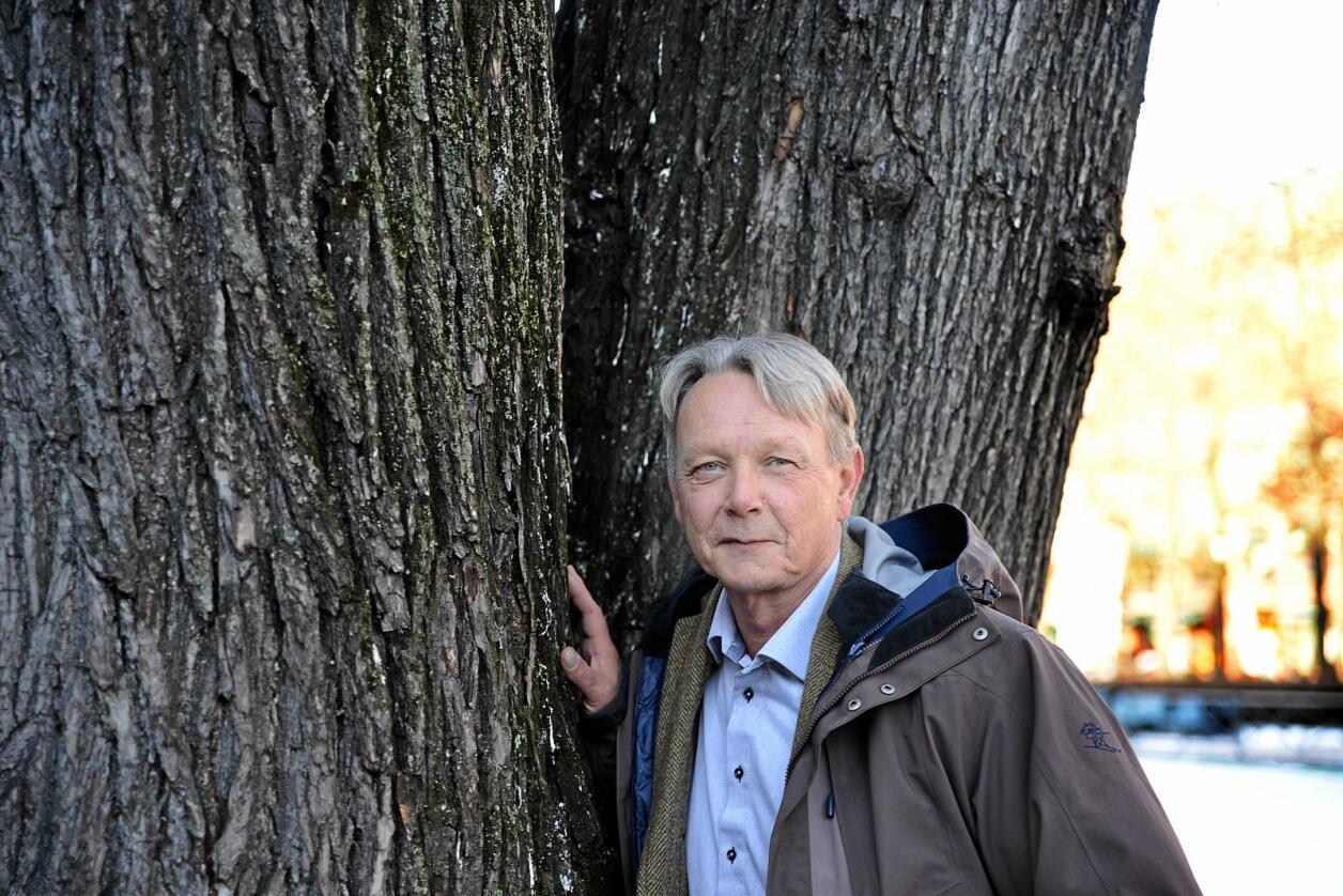 Arne Rørå, administrerende direktør i Norskog. Foto: Siri Juell Rasmussen
