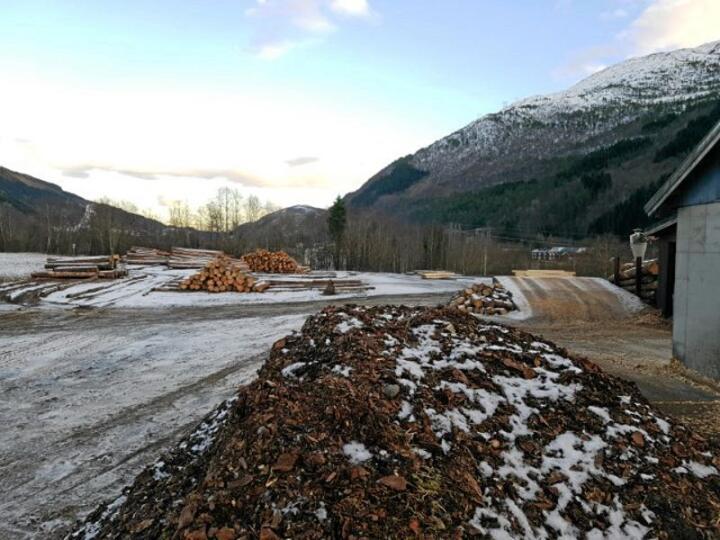 Bark fra norske sagbruk kan være viktig ressurs for utvikling av nye parasittmidler. Foto Berit M. Blomstrand