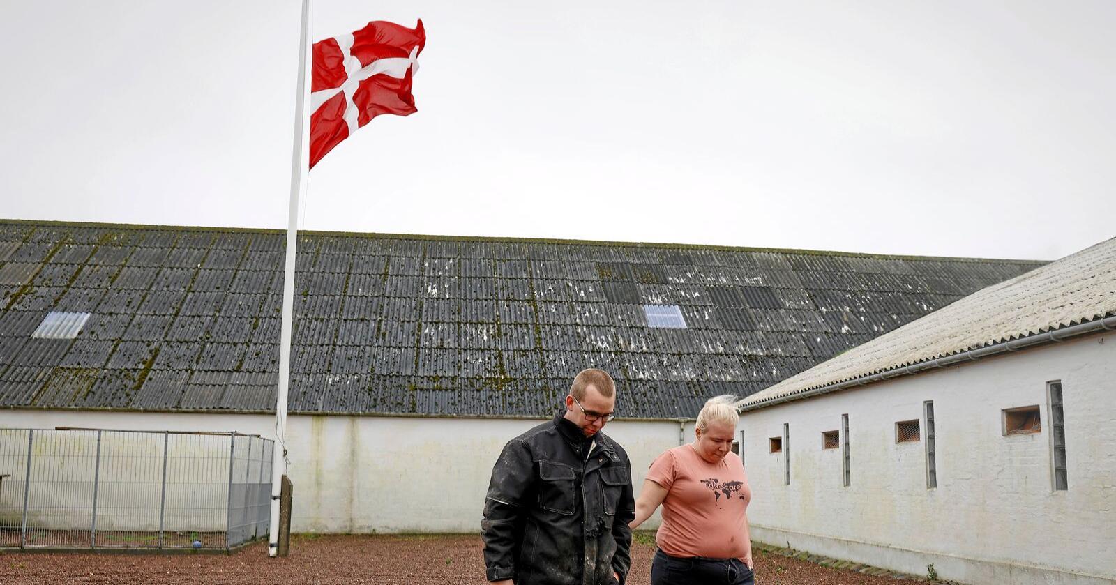 Peter and Trine Brinkmann Nielsen flagget på halv stand etter masseavlivingen av mink i vårt naboland i sør. Foto: Claus Bjoern Larsen/Ritzau/AP/NTB
