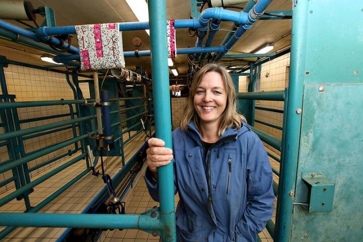 LÅGE KOSTNADER: Mjølkestallen frå 1995 gjer ennå jobben i fjøset til Marianne Skeie Callaghan. Det er med å halde driftskostnadene nede.