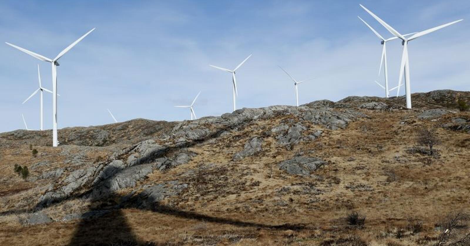 Nokre av vindturbinane i Midtfjellet vindpark i Fitjar kommune i Hordaland. Foto: Jan Kåre Ness / NTB scanpix / NPK