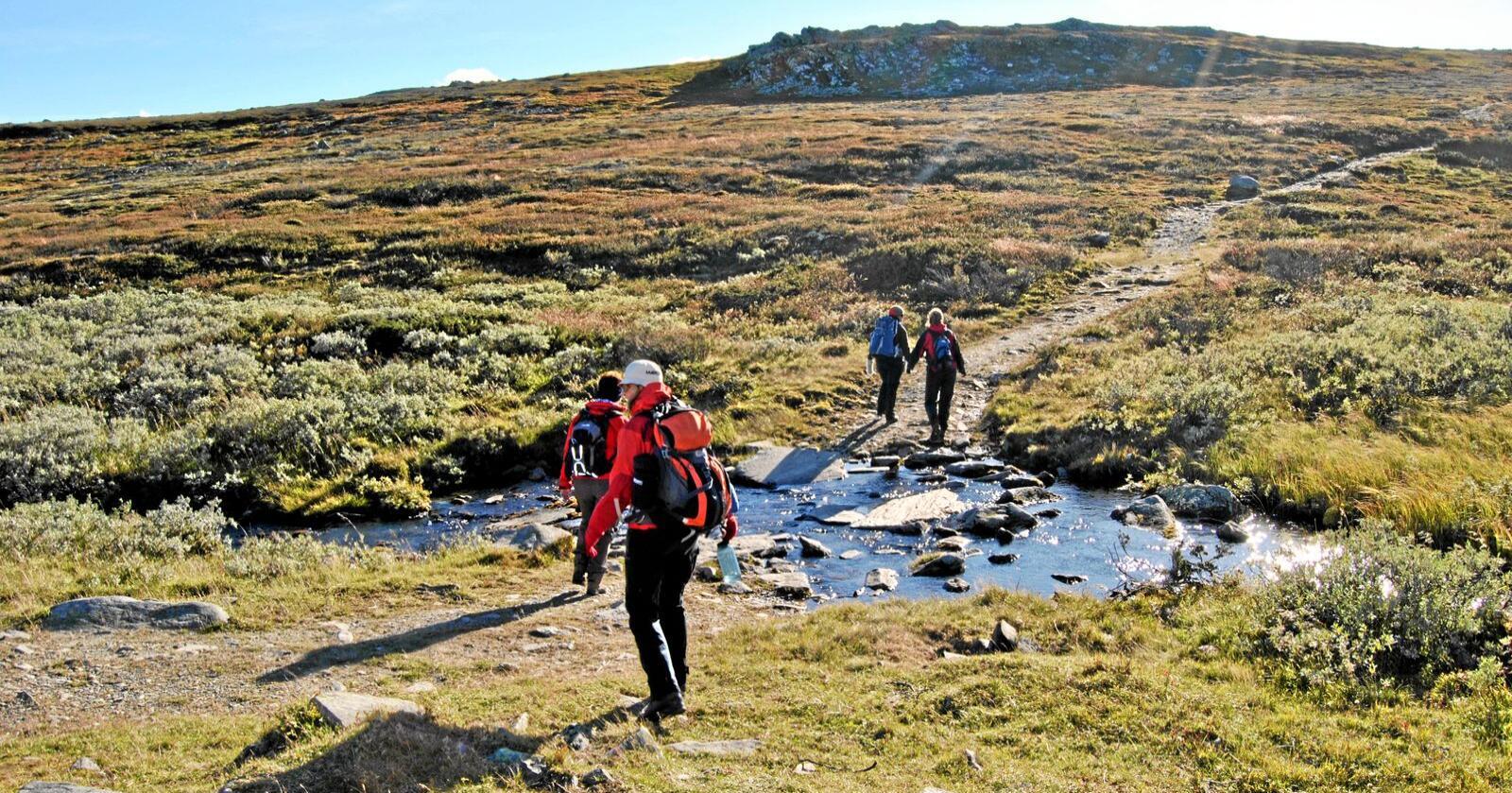 ut på tur aldri sur fjellvandring jentetur sti naturbasert turisme
