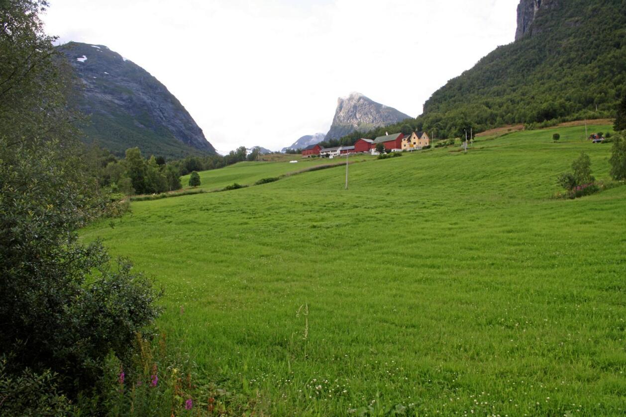 Møre og Romsdal er eit av fylka som har hatt størst prisvekst på landbrukseigedommar dei siste ti åra. Foto: Bjarne Bekkeheien Aase