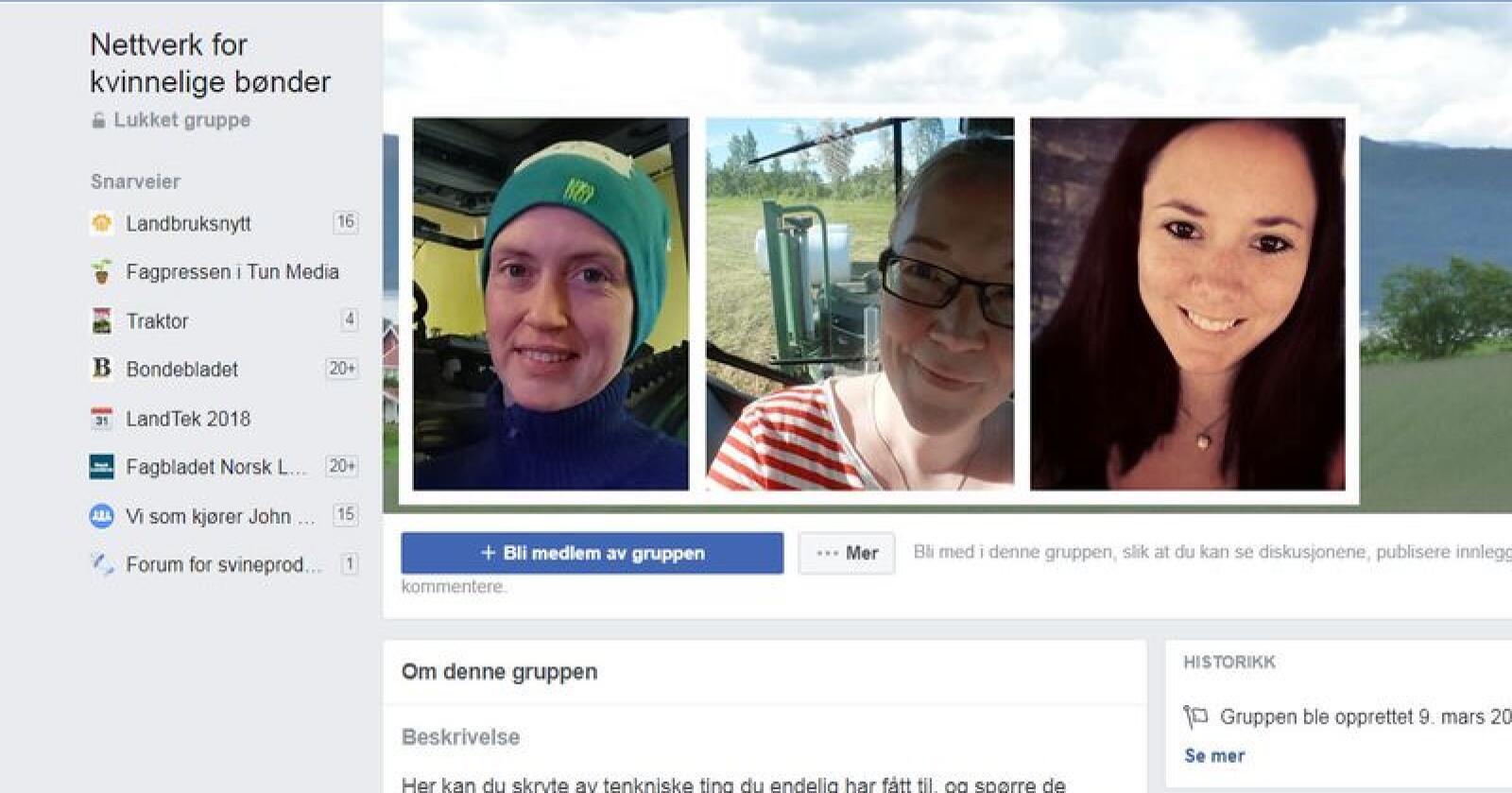 Kristine Bjoner (t.v), Birgitte Andreassen og Ailin Skårland berømmer Facebook gruppa «Nettverk for kvinnelige bønder».