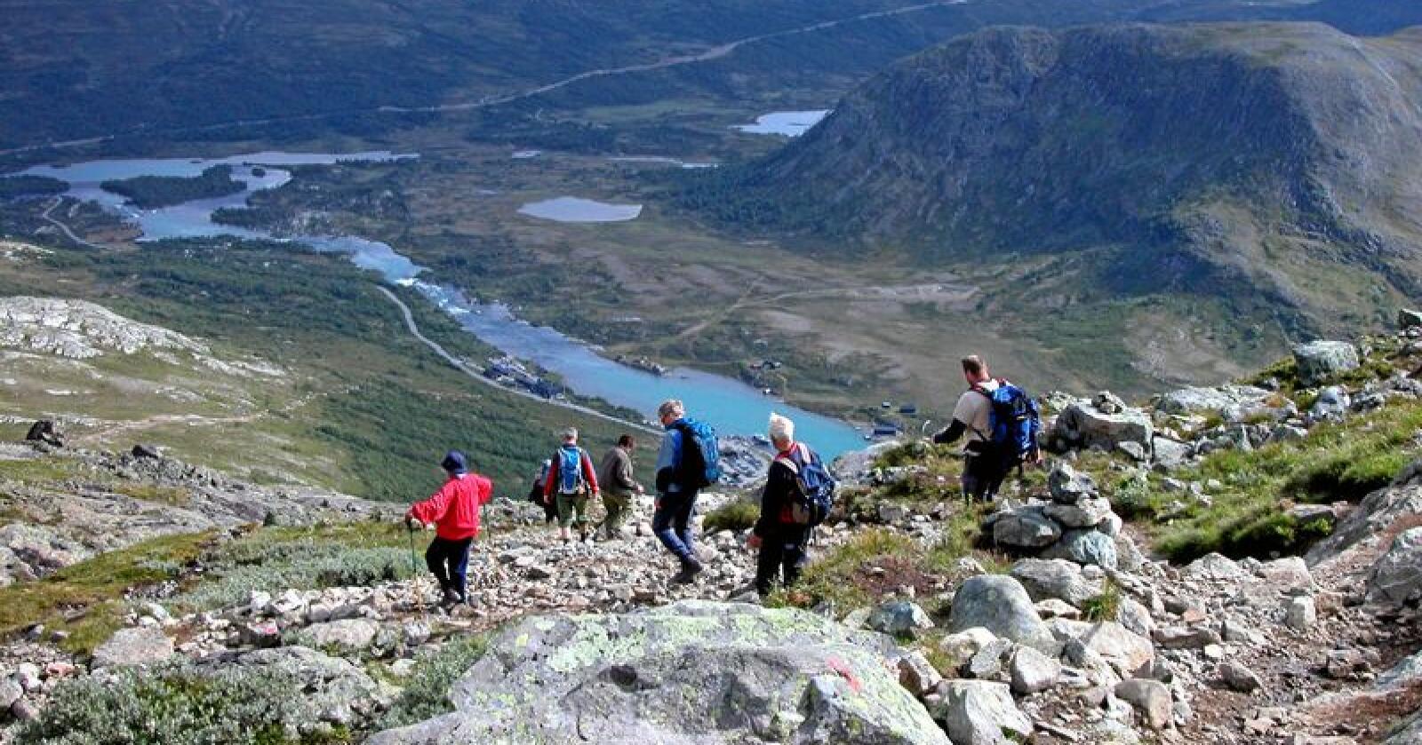 Kø: MDG-er og naturbruker Arne Rønning tror tilgangen til belastet natur må begrenses. Foto: Berit Keilen/NTB scanpix