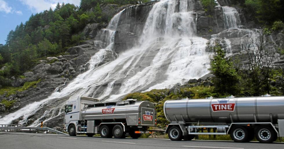 Mjølkemarknad: Produksjonen av mjølk ligg i år an til å bli den minste nokon sinne, berre med unntak av kriseåret 2011 som førte til smørkrise. Neste år og året etter ligg det derimot an til ytterlegare fall og nye rekordar når forbodet mot eksportstøtte slår inn. Her frå Furebergfossen ved Hardangerfjorden. Foto: Bjarne Bekkeheien Aase