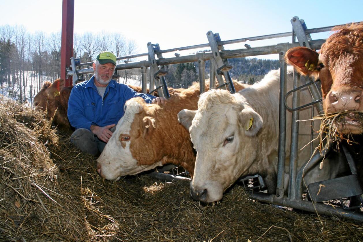 Åtvarar: Forslaget til regjeringa kan gå på helsa laus for bøndene, åtvarar bonde Sven Reiersen. Alle foto: Bjarne Bekkeheien Aase