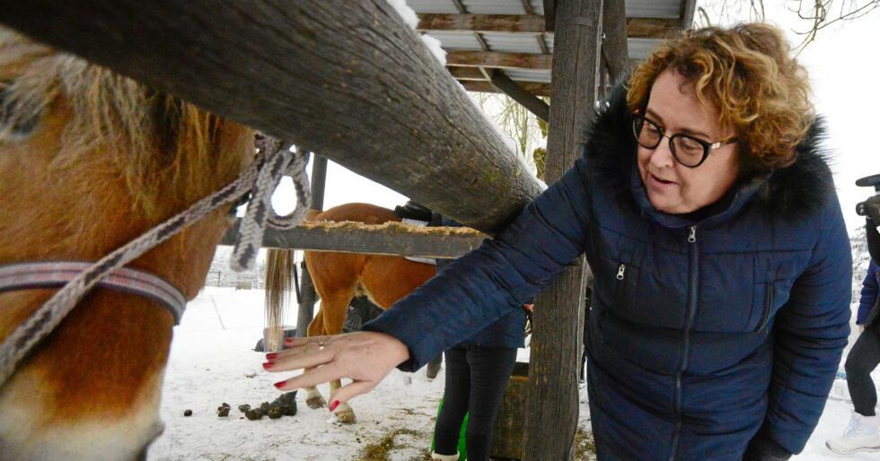 Bollestad mener Norge både har mulighet til å mette mennesker og dyr ved en krise, men ønsker mer produksjon av norskt fôr. Foto: Siri Juell Rasmussen