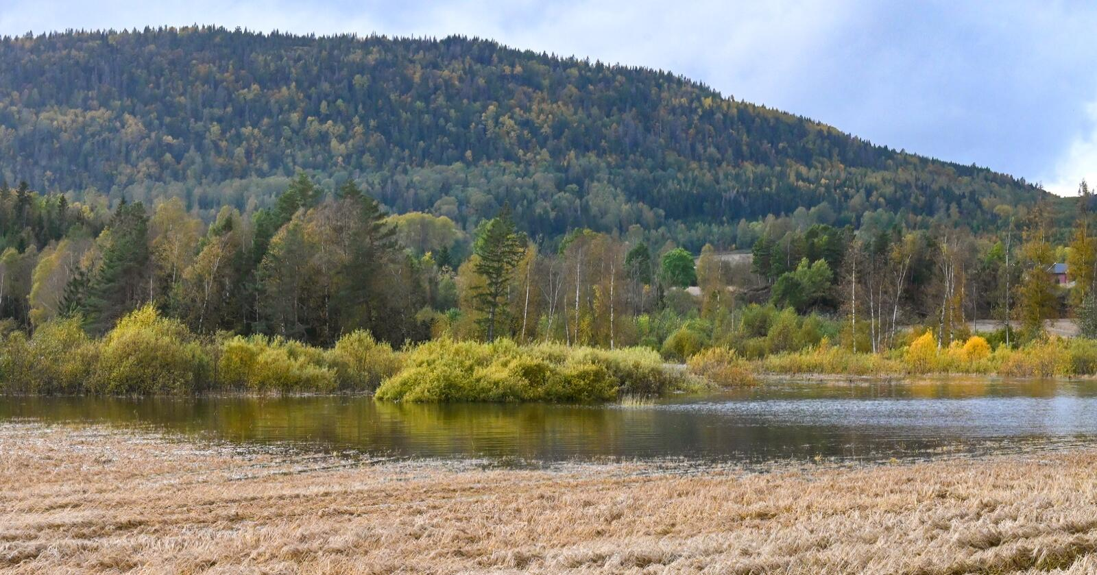 Eikenesvannet steg over sine bredder, og krøp 30-40 meter innover jordet.