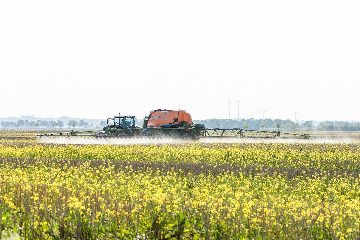 Går mot forbud mot glyfosat i EU