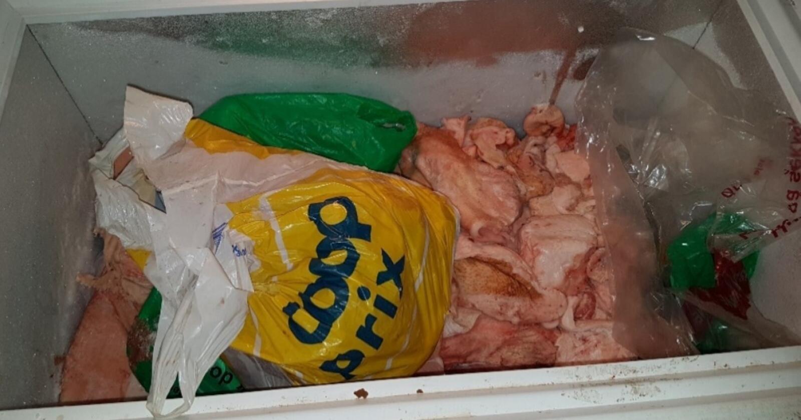 Kjøttet i en av fryserne i garasjen ble lagret uten emballasje. Ingen av posene som kjøtt lå i var egnet for emballering av næringsmidler. Foto: Mattilsynet