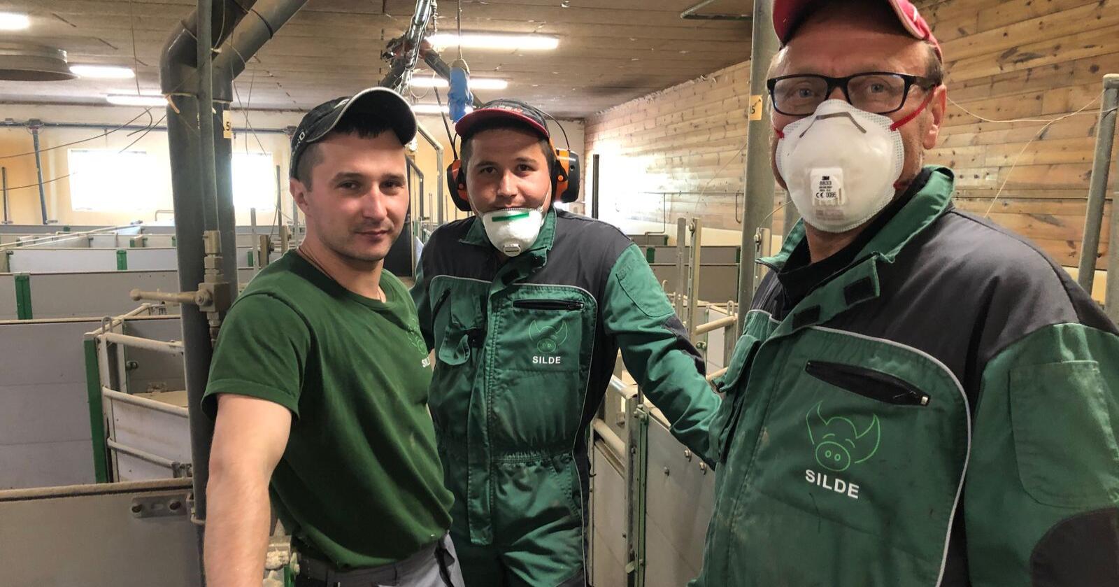 Gode arbeidsfolk: Ruslan (t.v.) og Yuri er faste arbeidsfolk hos Johannes Silde. Sikre og gode arbeidsfolk er avgjerande for resultatet, meiner Etne-bonden. Foto: Karl Erik Berge