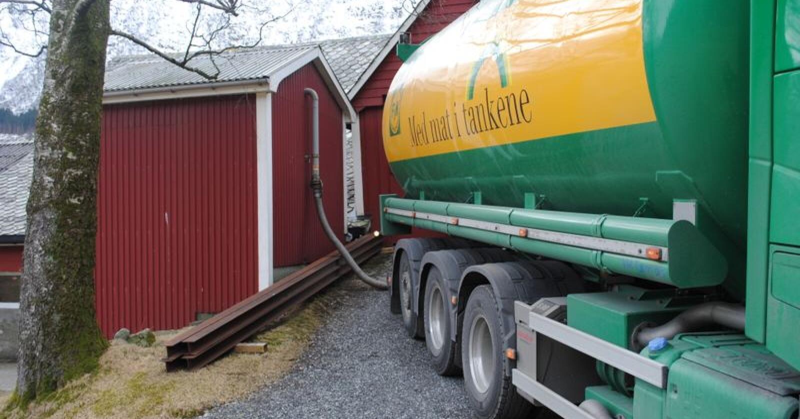 Prognosen viser at det er behov for å importere nesten 900 000 tonn karbohydratråvarer til kraftfôr og i overkant av 200 000 tonn matkorn. Foto fra Omvikdalen i Kvinnherad. (Foto: Karl Erik Berge)