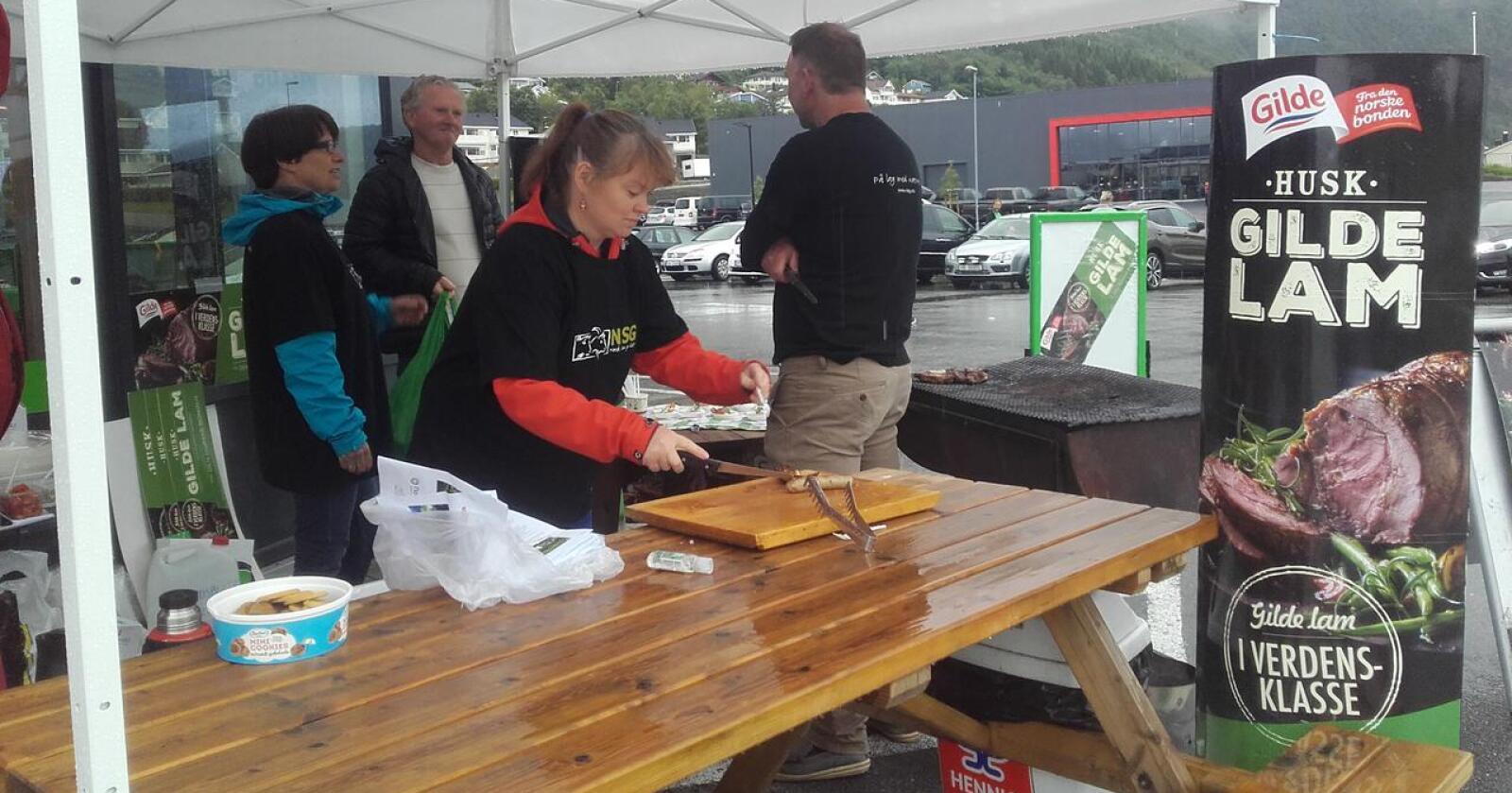 Sommer og grillfest: Få næringer er så viktige for vår lokale verdiskaping som småfenæringa, skriver Ronald Slemmen. Bildet viser Fræna Sau og Geit på stand i Malmefjorden. (Foto: Nortura)