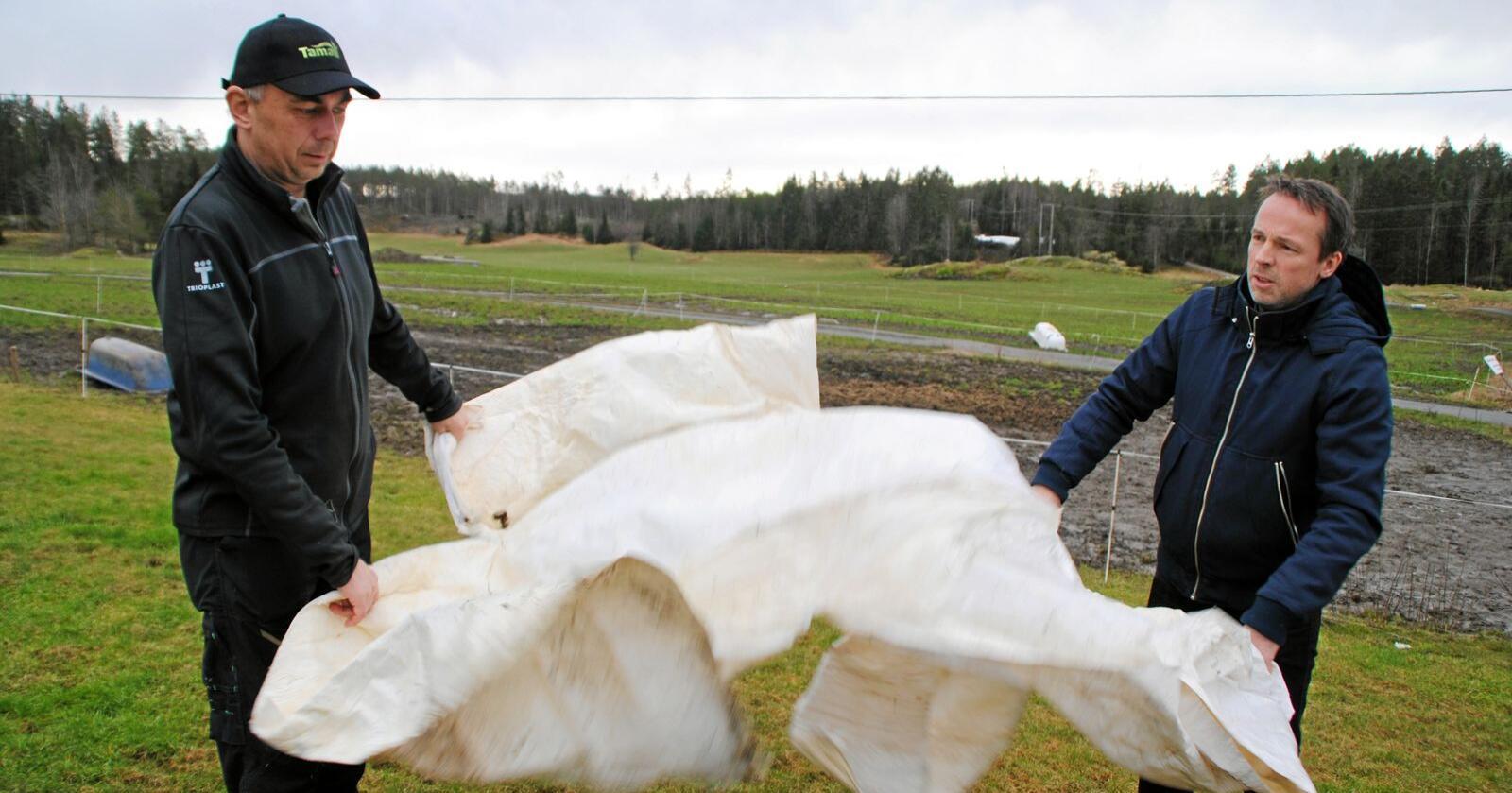 Håvard Kingsrød (t.v) og Andre Monsrud rister rundballeplasten ren før den kan pakkes. Foto: Lars Bilit Hagen