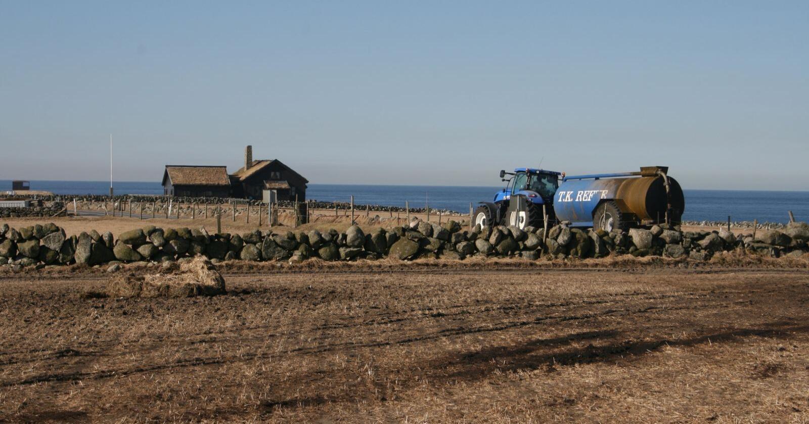 Nye reglar for plantevernmiddel gjer at landbruksarealet kan nyttast betre. Foto: Bjarne Bekkeheien Aase