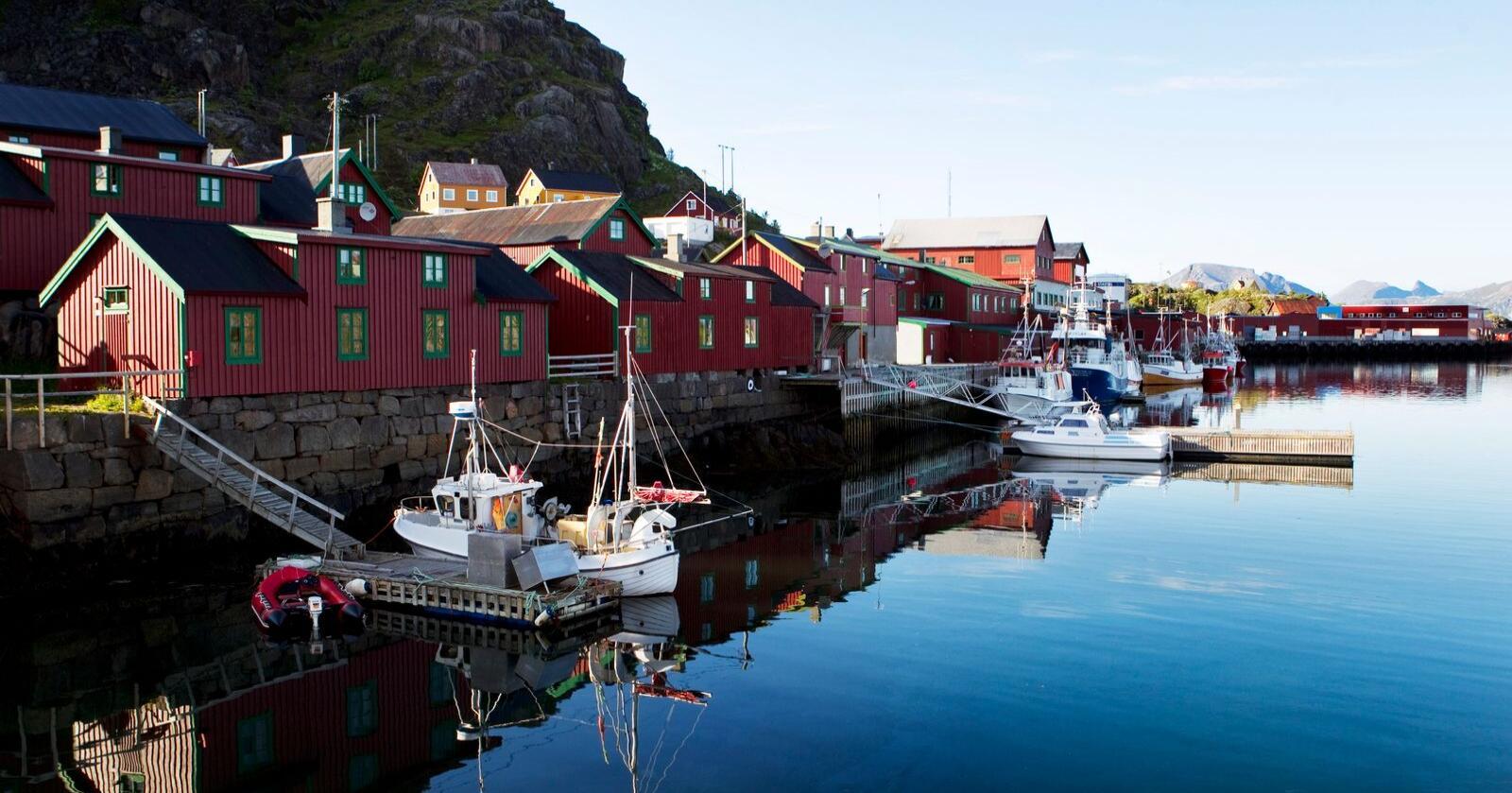 Før korona-krisen hadde Vestvågøy kommune en rivende utvikling i fiskeri- og turistnæringen. Likevel taper kommunen kampen om inntektene. Stamsund på Vestvågøy i Lofoten.  Foto: Håkon Mosvold Larsen / NTB