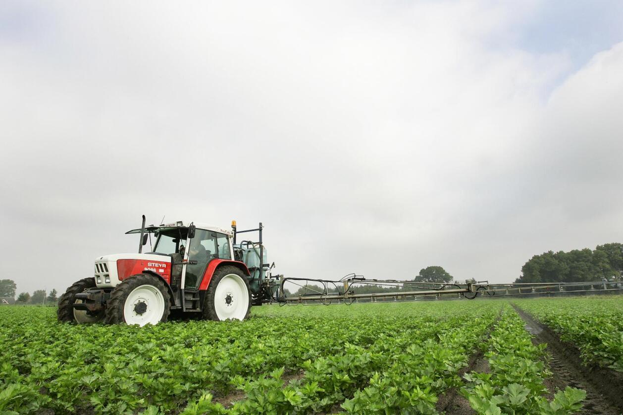 – Skremmekampanje: Danske bønder mener Coop driver en skremmekampanje med sin nye kampanje for økologisk mat. Foto: Colourbox