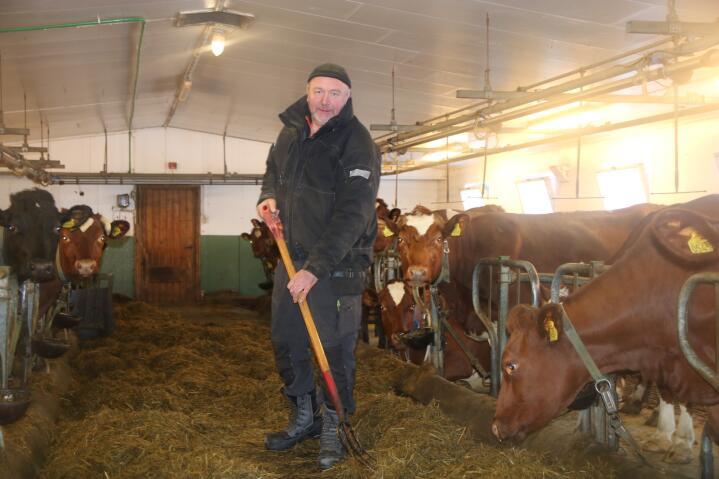 BÅSFJØS: Skal Torbjørn kunne fortsette som melkeprodusent etter 2024, må han bygge om fjøset for å få en fødebinge. Da vil han samtidig miste tre båsplasser.