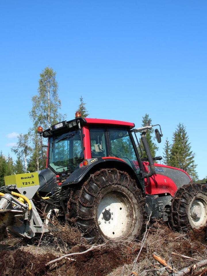 Fortsmann: 32 år gamle John-Anders Strande satser alt på skogen. Ved siden av drift på egen gård og leiekjøring er han også daglig leder i organisasjonen Norsk Juletre.