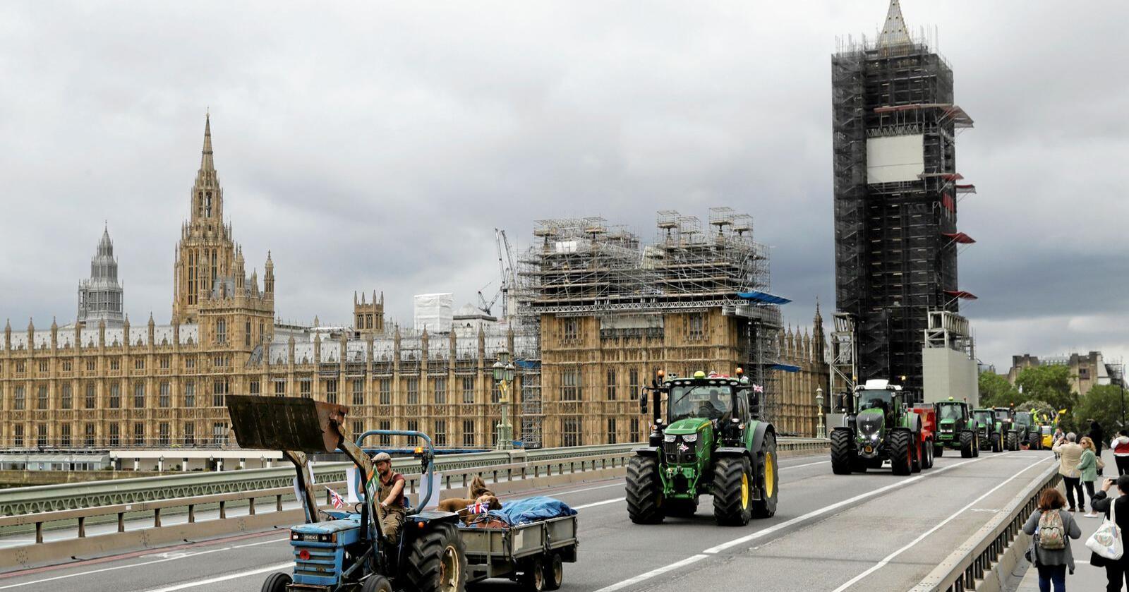 Sinte Britiske bønder frykter å bli skviset av amerikansk billigmat etter Brexit. Foto:AP Photo/Matt Dunham