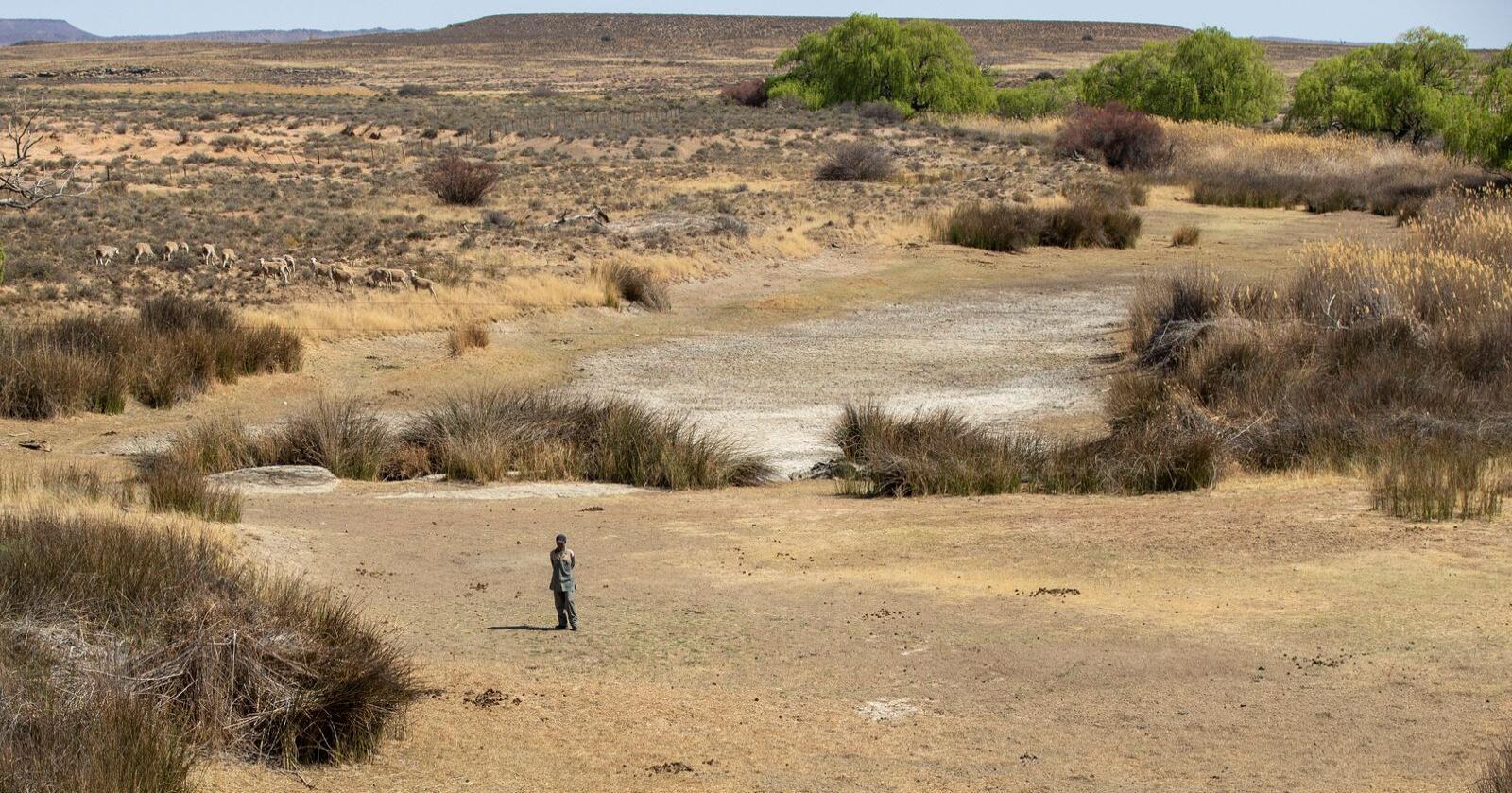 Flere klimafaktorer forverrer menneskers helse over hele verden, ifølge en ny rapport fra WHO. Arkivfoto: Themba Hadebe / AP / NTB