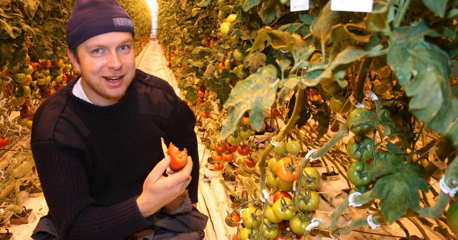 Straumsjokk: Tomatbonde og gartnar Jøran Wiig seier brukbare prisar på tomatar på langt nær dekker inn for den eksplosive veksten i energikostnadene. Til og med juli i år har energikostnadene til Wiig auka med 2,7 millionar kroner. Her frå ein del år tilbake då han investerte 25 millionar kroner i større veksthus. Foto: Bjarne Bekkeheien Aase